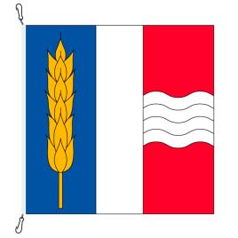 Bandiera comune, stampato,