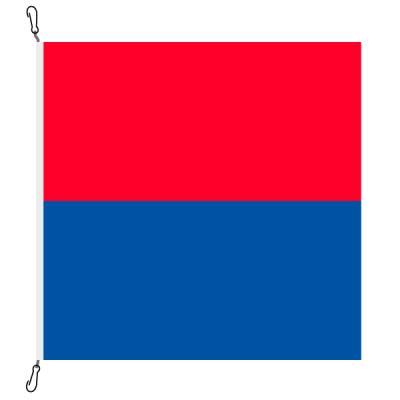 Fahne, Kanton eingesetzt Tessin, 58 x 58 cm