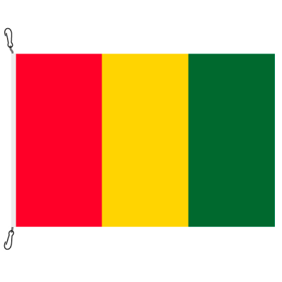 Fahne, Nation bedruckt, Guinea, 200 x 300 cm