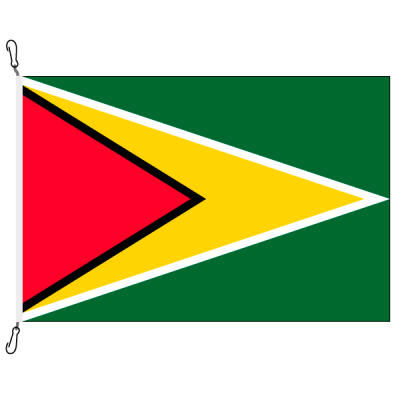 Fahne, Nation bedruckt, Guyana, 70 x 100 cm