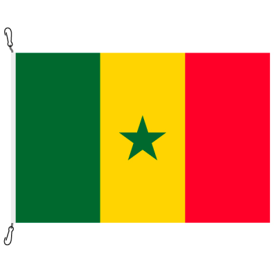 Fahne, Nation bedruckt, Senegal, 70 x 100 cm