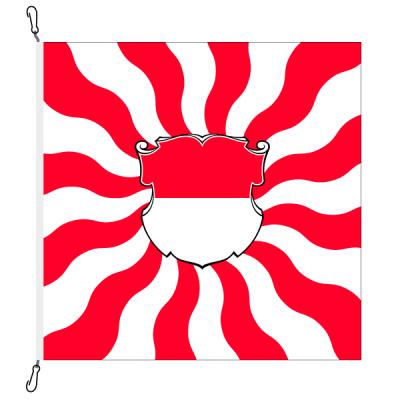 Fahne, geflammt, bedruckt Solothurn, 78 x 78 cm