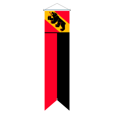 Flagge, Kanton bedruckt Bern, 100 x 500 cm,