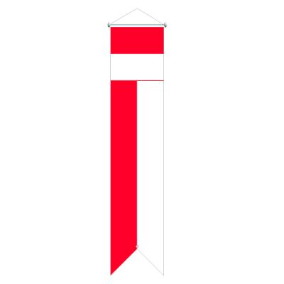 Flagge, Kanton bedruckt Solothurn, 120 x 700 cm,