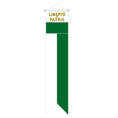 Flagge, Kanton bedruckt Waadt, 78 x 300 cm,