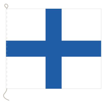 Flagge, Signal bedruckt X, 20 x 24 cm