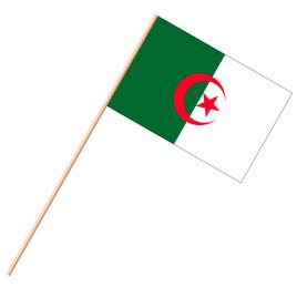 Fahne, an Holzstab 90 cm lang Algerien, 25 x 35 cm