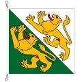 Fahne, Kanton eingesetzt Thurgau, 58 x 58 cm