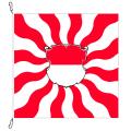 Fahne, geflammt, bedruckt Solothurn, 100 x 100 cm