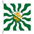 Fahne, geflammt, bedruckt Thurgau, 150 x 150 cm