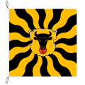 Fahne, geflammt, bedruckt Uri, 150 x 150 cm