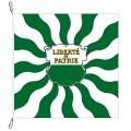 Fahne, geflammt, bedruckt Waadt, 100 x 100 cm